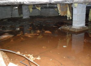 water issues in crawlspace